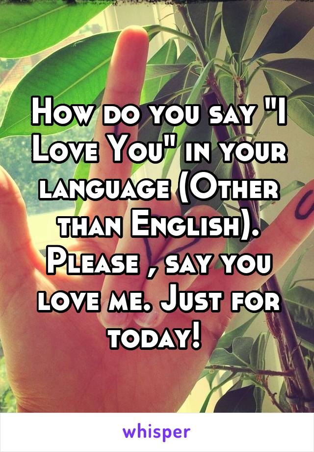 "How do you say ""I Love You"" in your language (Other than English). Please , say you love me. Just for today!"