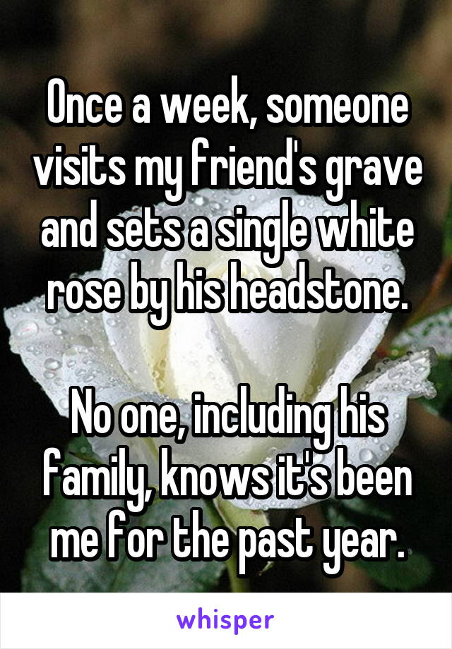 Once a week, someone visits my friend's grave and sets a single white rose by his headstone.  No one, including his family, knows it's been me for the past year.