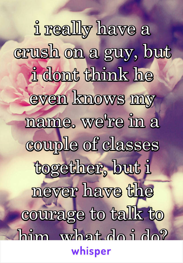 i really have a crush on a guy, but i dont think he even knows my name. we're in a couple of classes together, but i never have the courage to talk to him. what do i do?