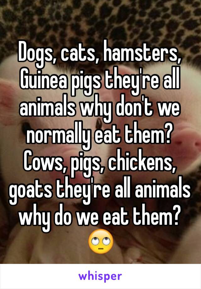 Dogs, cats, hamsters, Guinea pigs they're all animals why don't we normally eat them? Cows, pigs, chickens, goats they're all animals why do we eat them? 🙄