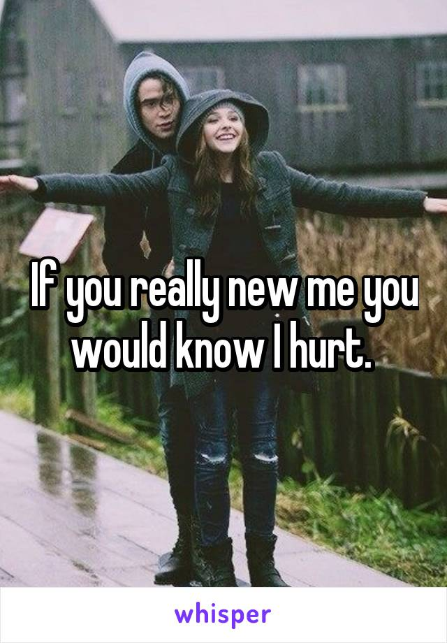 If you really new me you would know I hurt.