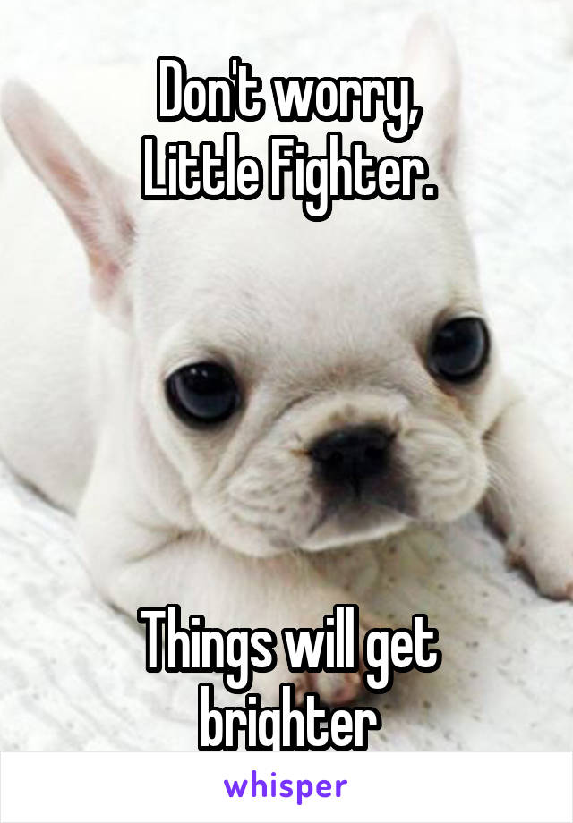 Don't worry, Little Fighter.      Things will get brighter
