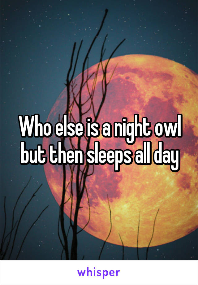 Who else is a night owl but then sleeps all day