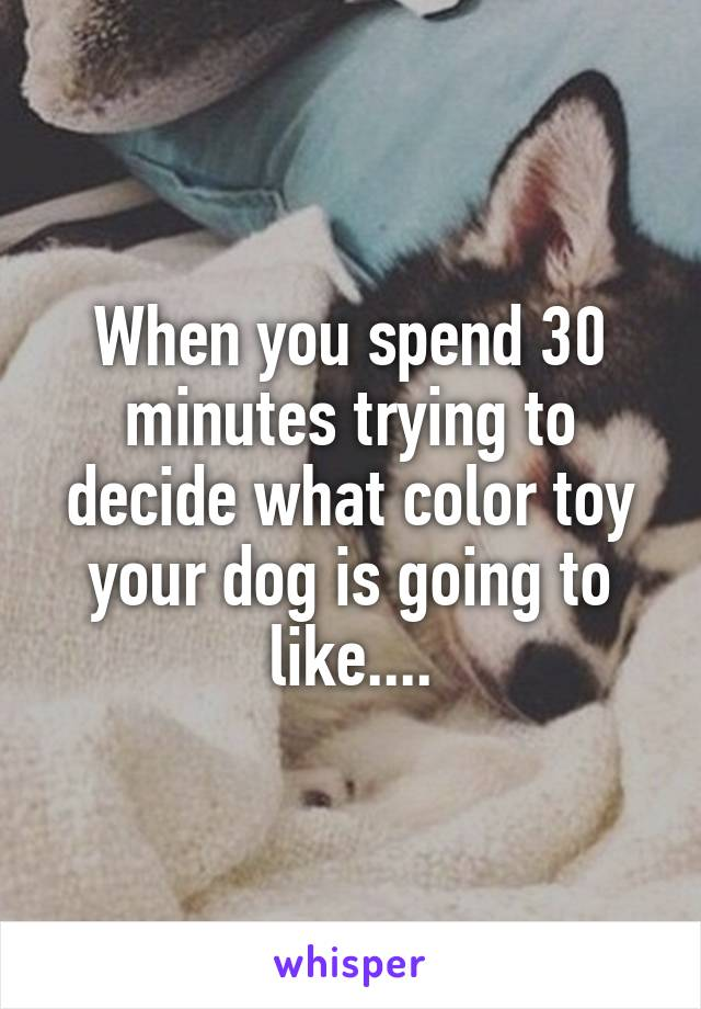 When you spend 30 minutes trying to decide what color toy your dog is going to like....