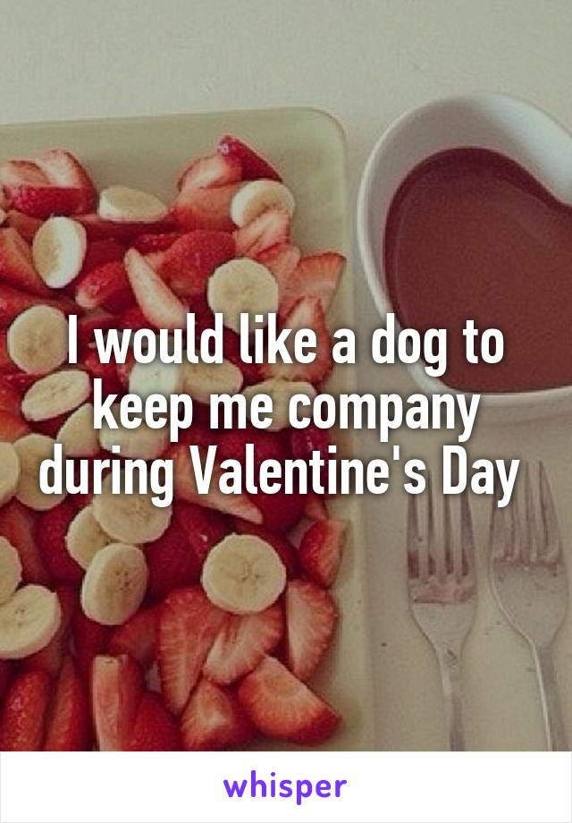 I would like a dog to keep me company during Valentine's Day