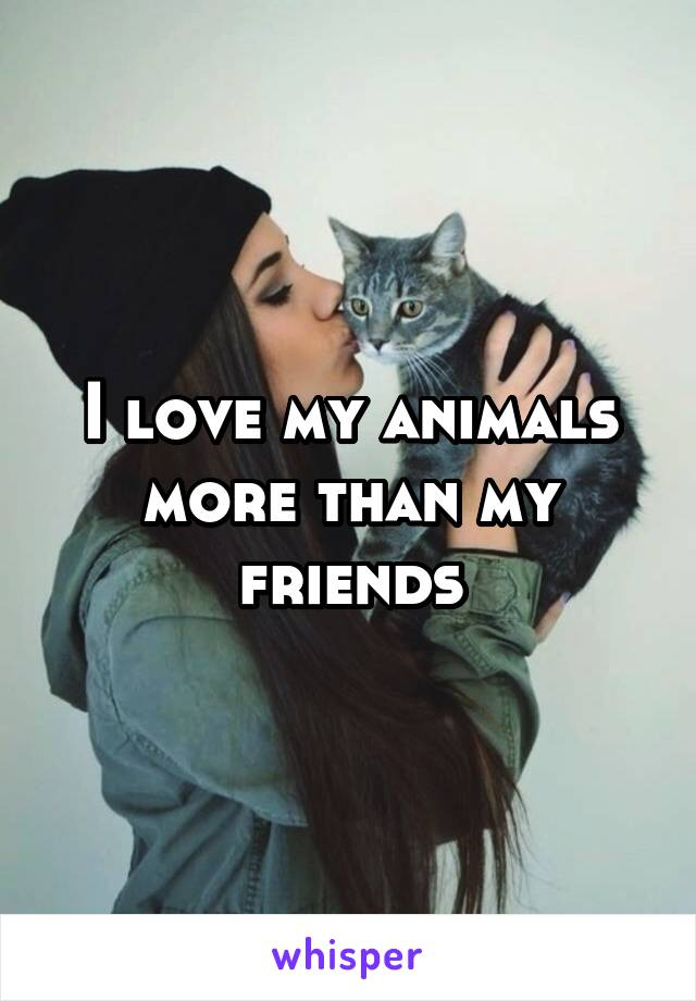 I love my animals more than my friends