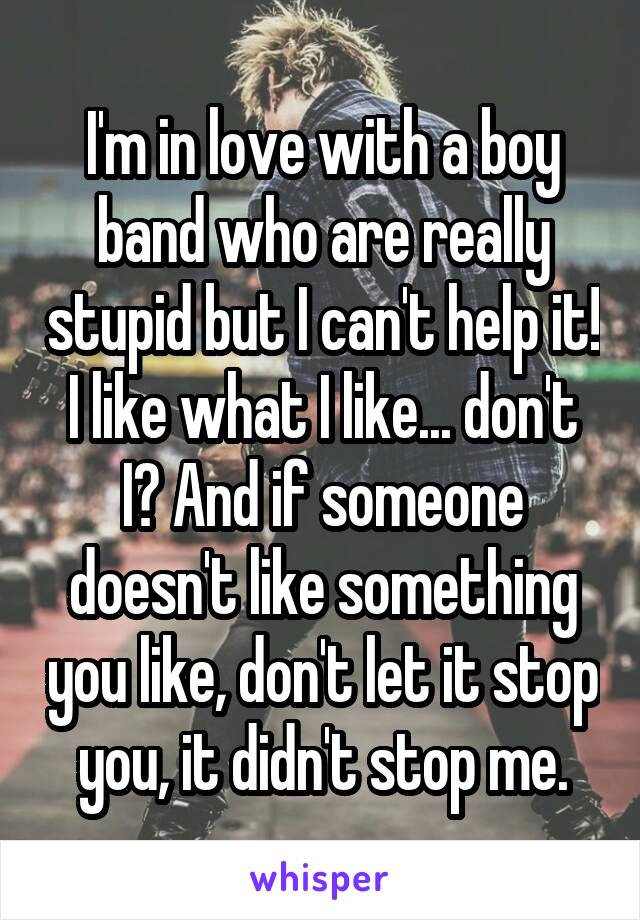 I'm in love with a boy band who are really stupid but I can't help it! I like what I like... don't I? And if someone doesn't like something you like, don't let it stop you, it didn't stop me.