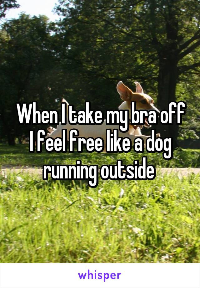 When I take my bra off I feel free like a dog running outside