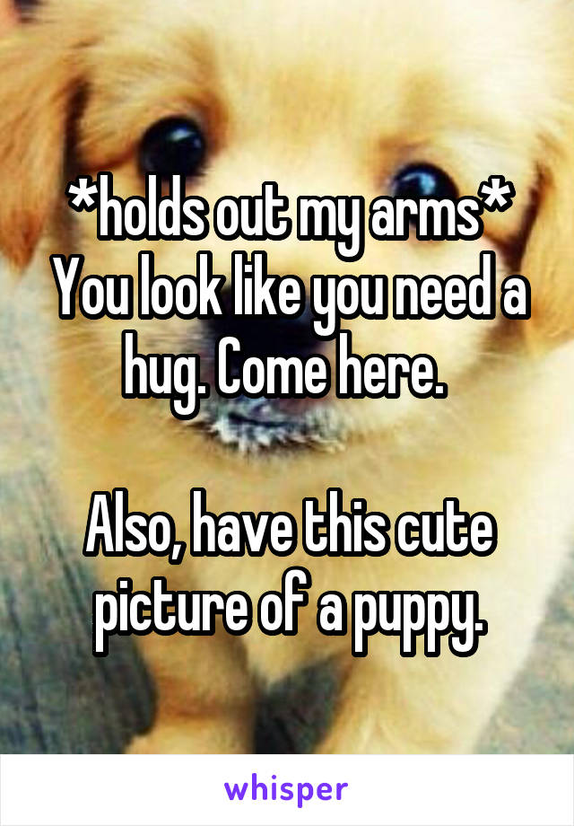 *holds out my arms* You look like you need a hug. Come here.   Also, have this cute picture of a puppy.