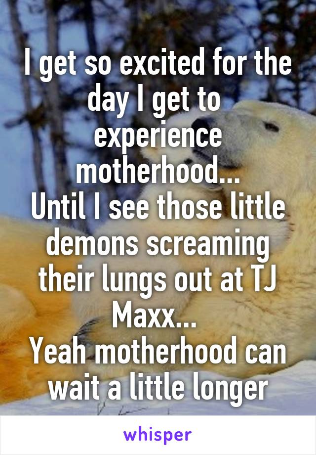 I get so excited for the day I get to  experience motherhood... Until I see those little demons screaming their lungs out at TJ Maxx...  Yeah motherhood can wait a little longer