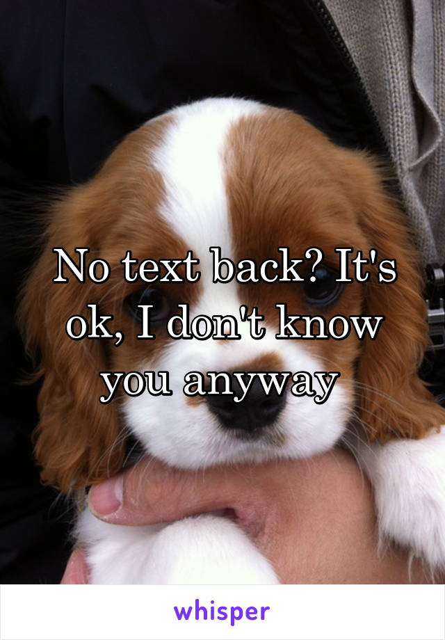 No text back? It's ok, I don't know you anyway