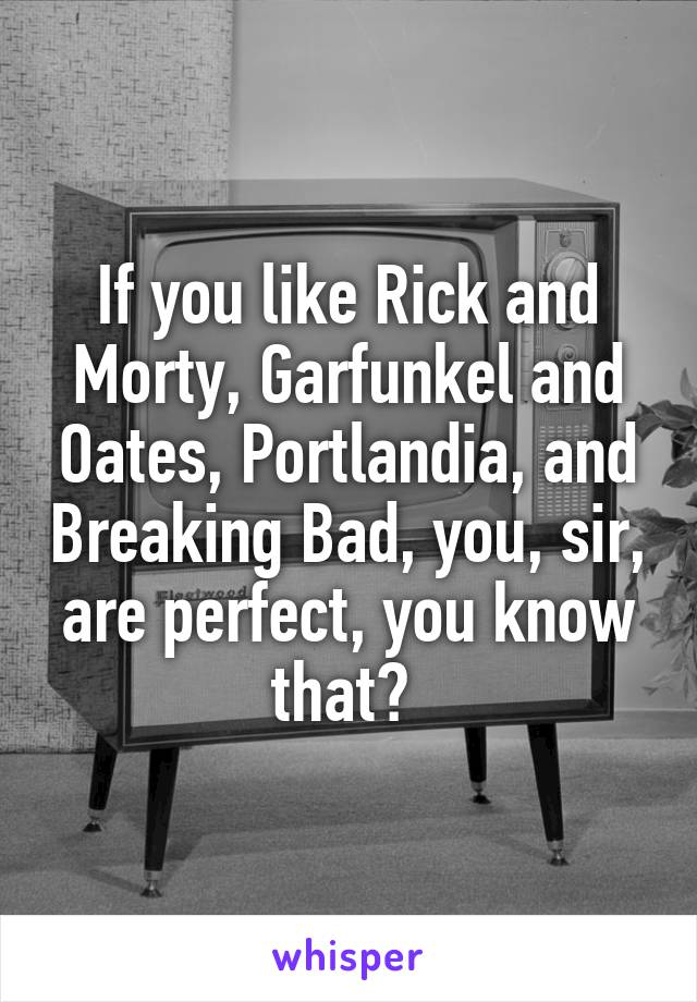 If you like Rick and Morty, Garfunkel and Oates, Portlandia, and Breaking Bad, you, sir, are perfect, you know that?