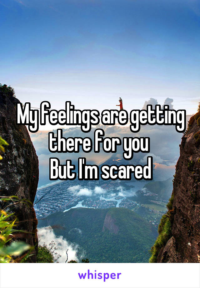 My feelings are getting there for you  But I'm scared
