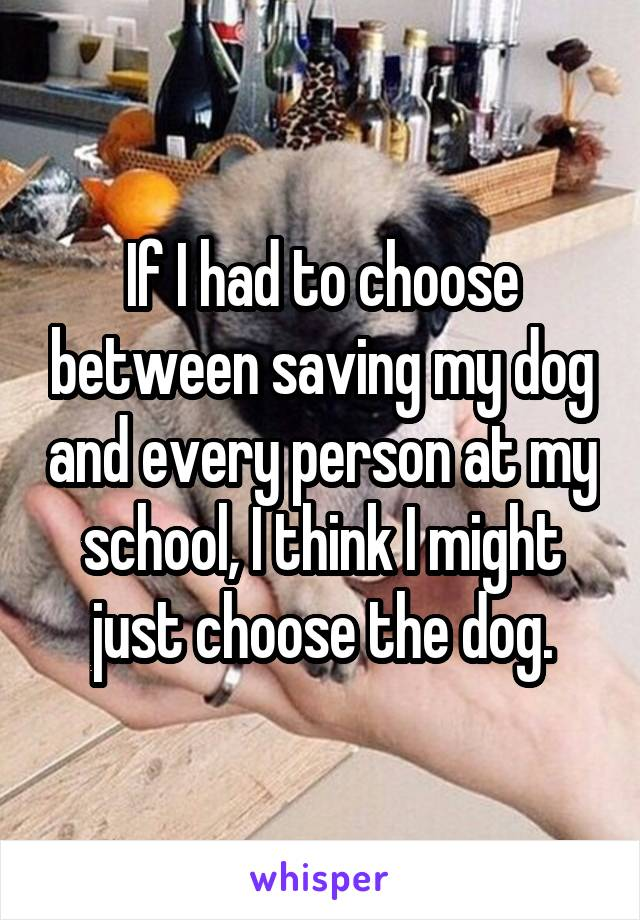 If I had to choose between saving my dog and every person at my school, I think I might just choose the dog.