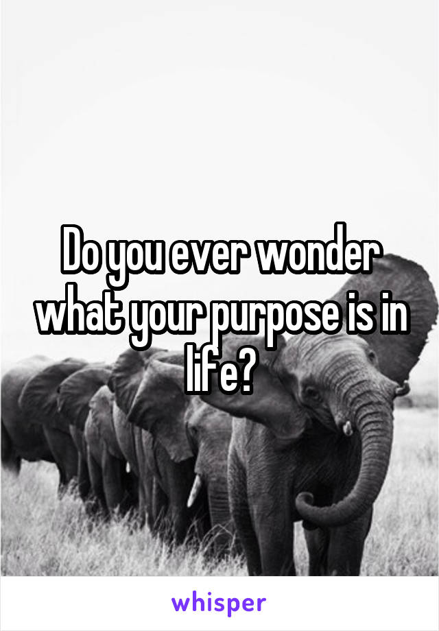 Do you ever wonder what your purpose is in life?