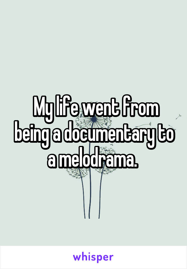 My life went from being a documentary to a melodrama.