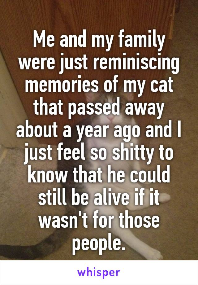 Me and my family were just reminiscing memories of my cat that passed away about a year ago and I just feel so shitty to know that he could still be alive if it wasn't for those people.