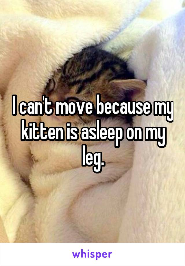I can't move because my kitten is asleep on my leg.