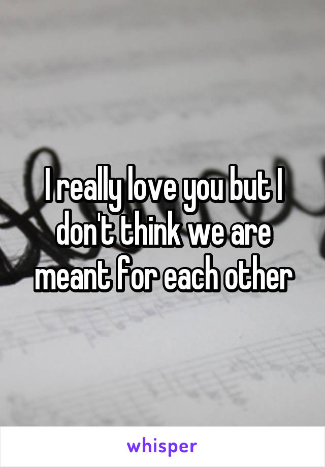 I really love you but I don't think we are meant for each other