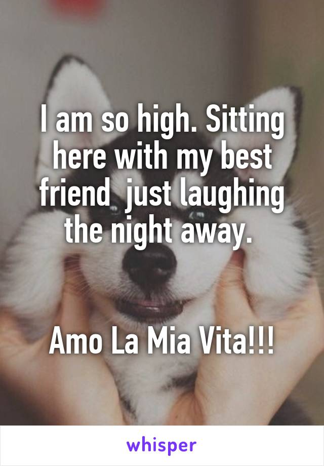 I am so high. Sitting here with my best friend  just laughing the night away.    Amo La Mia Vita!!!
