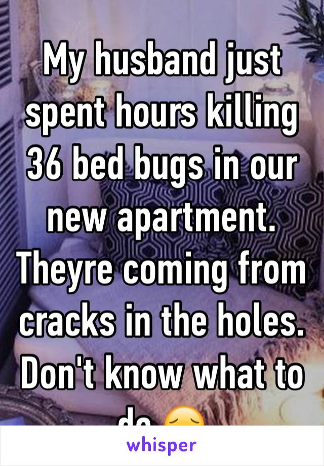 My husband just spent hours killing 36 bed bugs in our new apartment. Theyre coming from cracks in the holes. Don't know what to do 😔