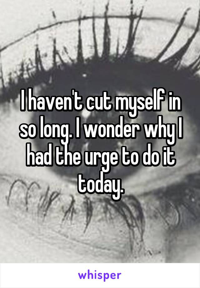 I haven't cut myself in so long. I wonder why I had the urge to do it today.