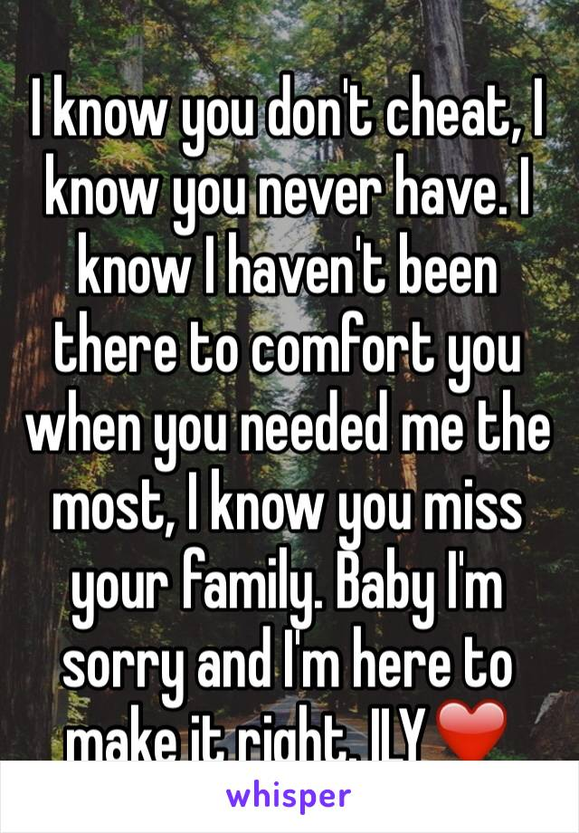 I know you don't cheat, I know you never have. I know I haven't been there to comfort you when you needed me the most, I know you miss your family. Baby I'm sorry and I'm here to make it right. ILY❤️