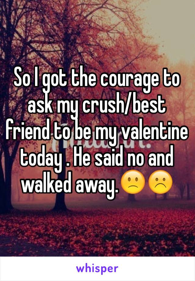 So I got the courage to ask my crush/best friend to be my valentine today . He said no and walked away.🙁☹️