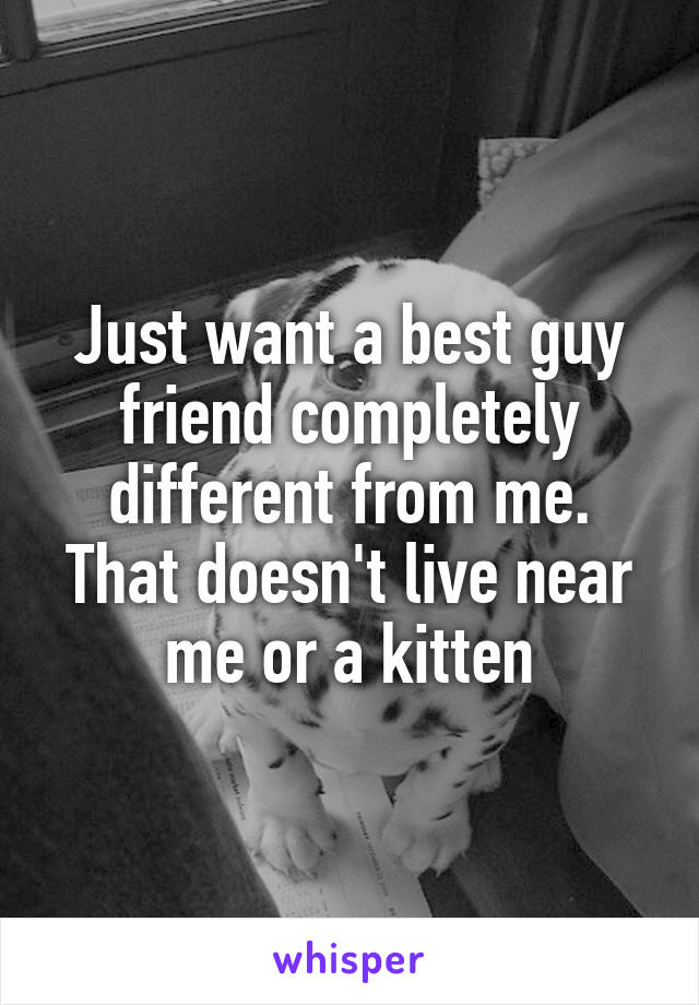 Just want a best guy friend completely different from me. That doesn't live near me or a kitten