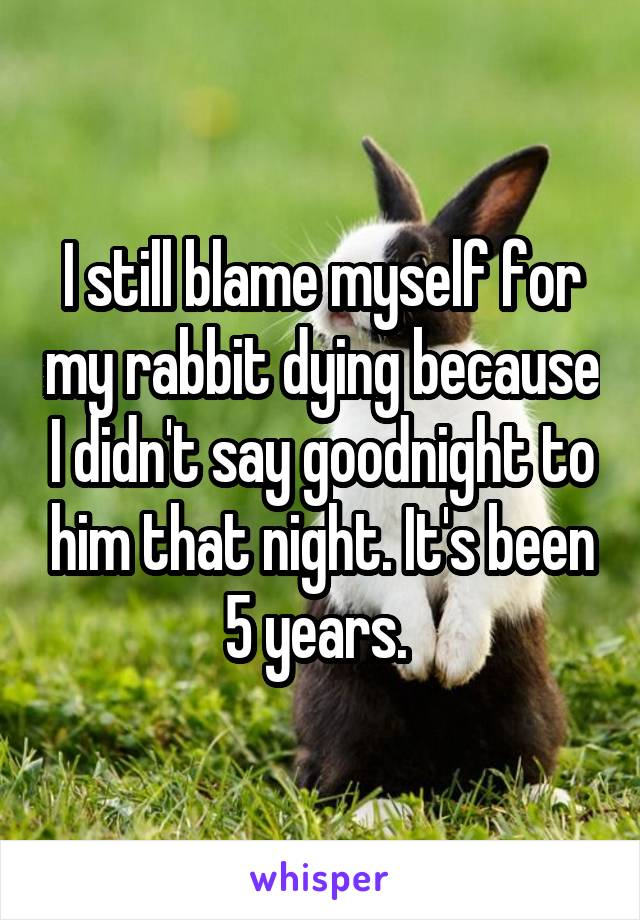 I still blame myself for my rabbit dying because I didn't say goodnight to him that night. It's been 5 years.