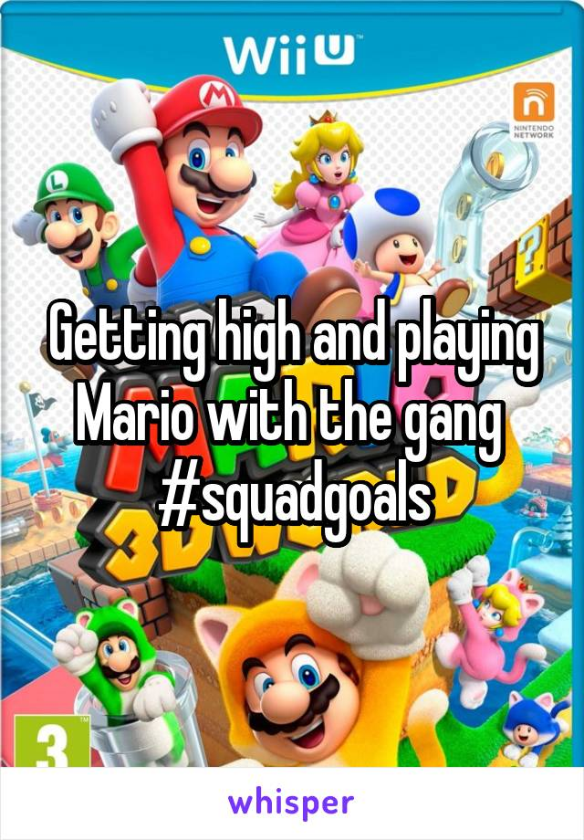 Getting high and playing Mario with the gang  #squadgoals