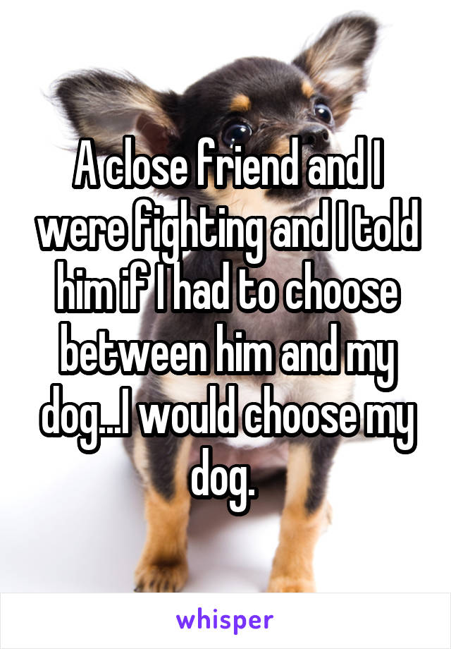 A close friend and I were fighting and I told him if I had to choose between him and my dog...I would choose my dog.
