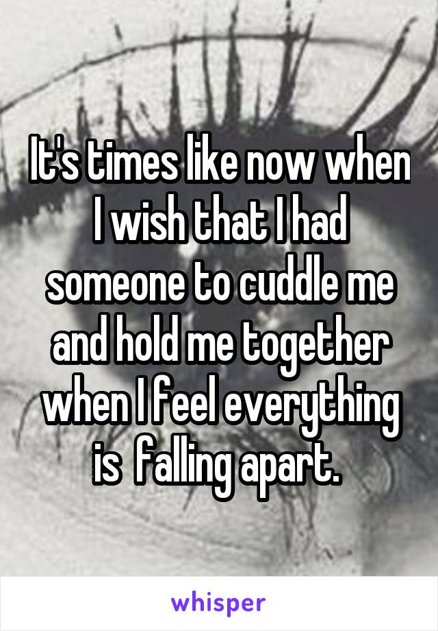 It's times like now when I wish that I had someone to cuddle me and hold me together when I feel everything is  falling apart.