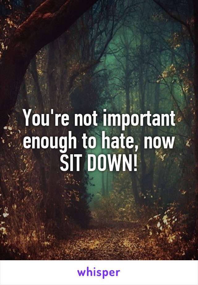 You're not important enough to hate, now SIT DOWN!