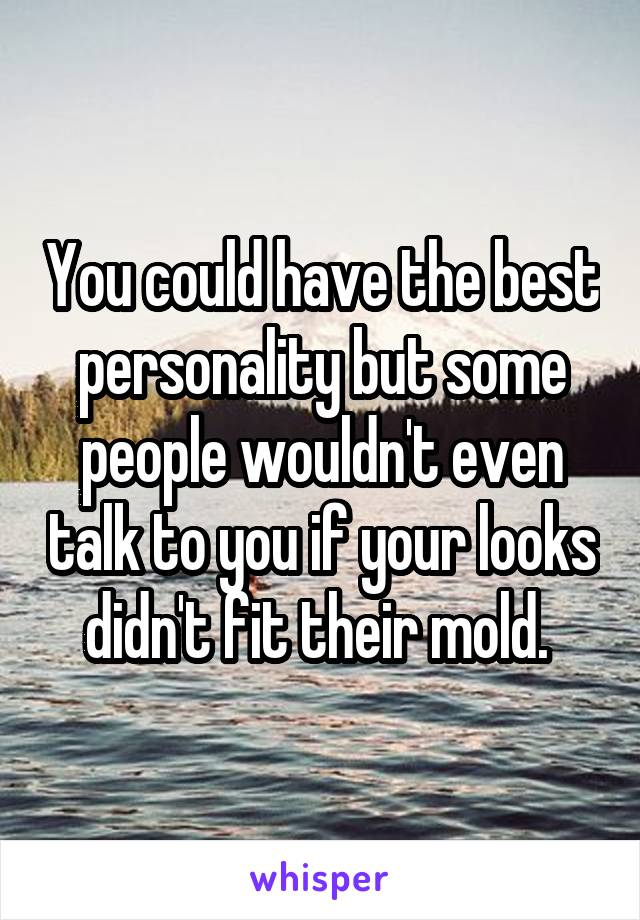 You could have the best personality but some people wouldn't even talk to you if your looks didn't fit their mold.