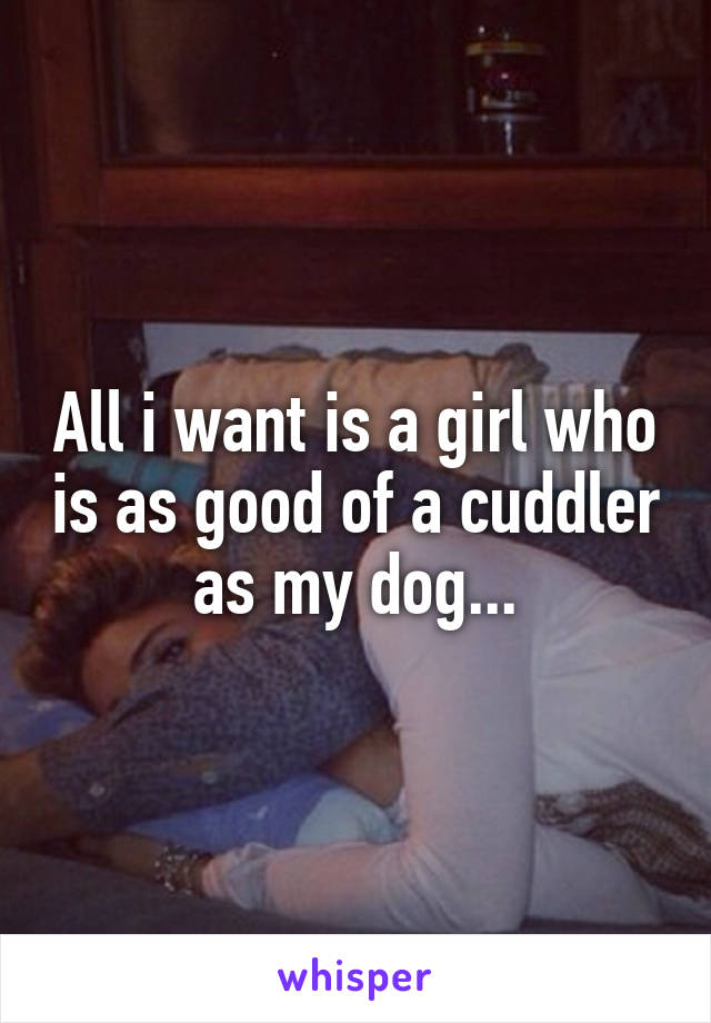 All i want is a girl who is as good of a cuddler as my dog...