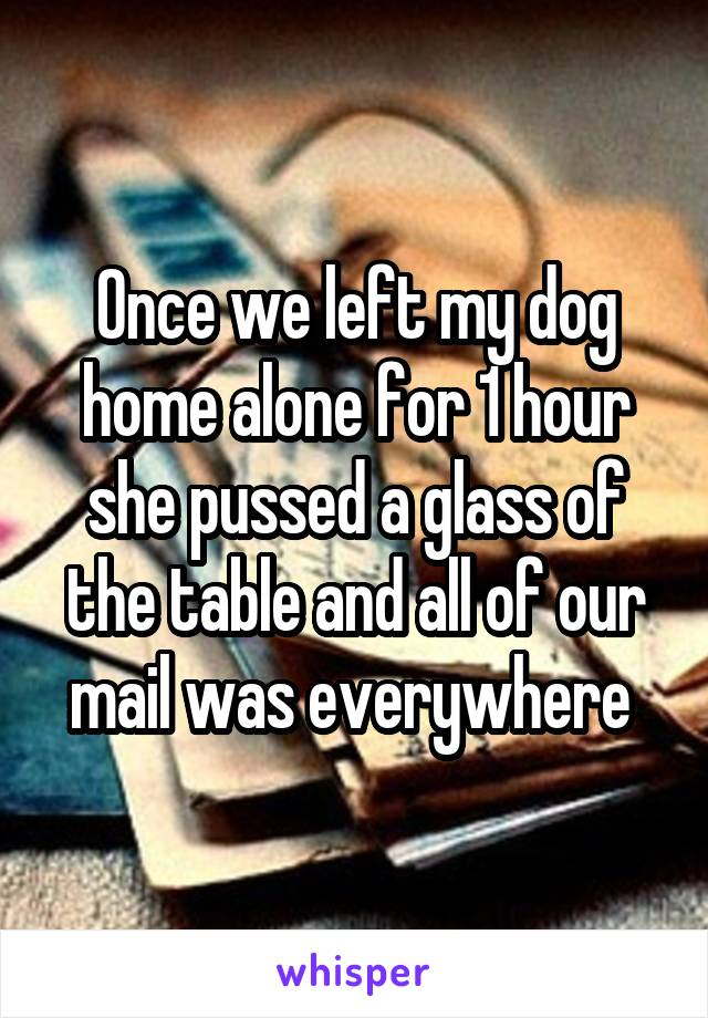 Once we left my dog home alone for 1 hour she pussed a glass of the table and all of our mail was everywhere