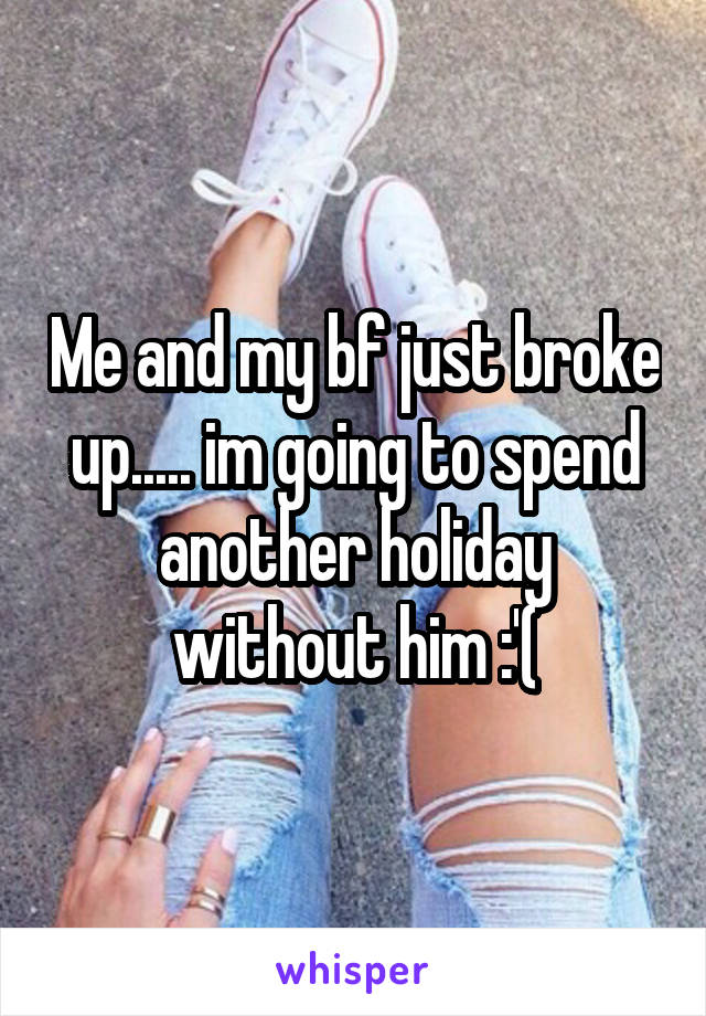 Me and my bf just broke up..... im going to spend another holiday without him :'(