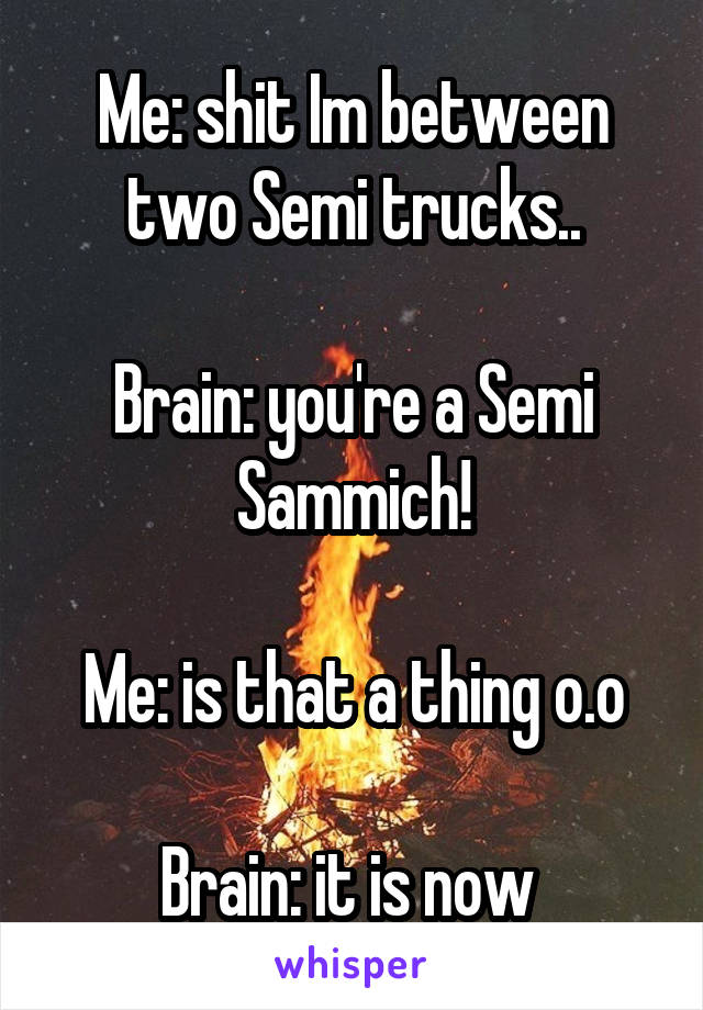 Me: shit Im between two Semi trucks..  Brain: you're a Semi Sammich!  Me: is that a thing o.o  Brain: it is now