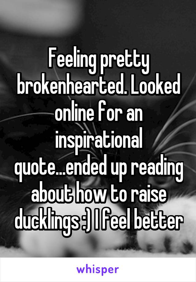 Feeling pretty brokenhearted. Looked online for an inspirational quote...ended up reading about how to raise ducklings :) I feel better