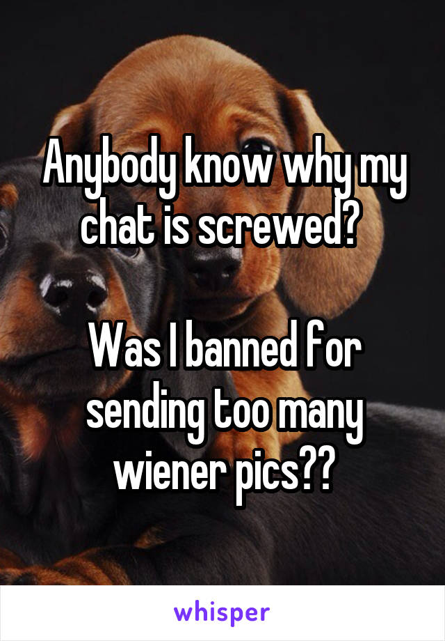 Anybody know why my chat is screwed?   Was I banned for sending too many wiener pics??