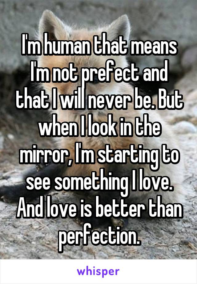 I'm human that means I'm not prefect and that I will never be. But when I look in the mirror, I'm starting to see something I love. And love is better than perfection.