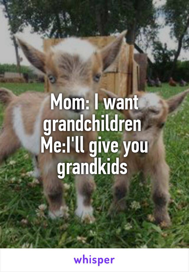 Mom: I want grandchildren  Me:I'll give you grandkids