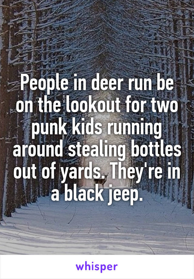 People in deer run be on the lookout for two punk kids running around stealing bottles out of yards. They're in a black jeep.