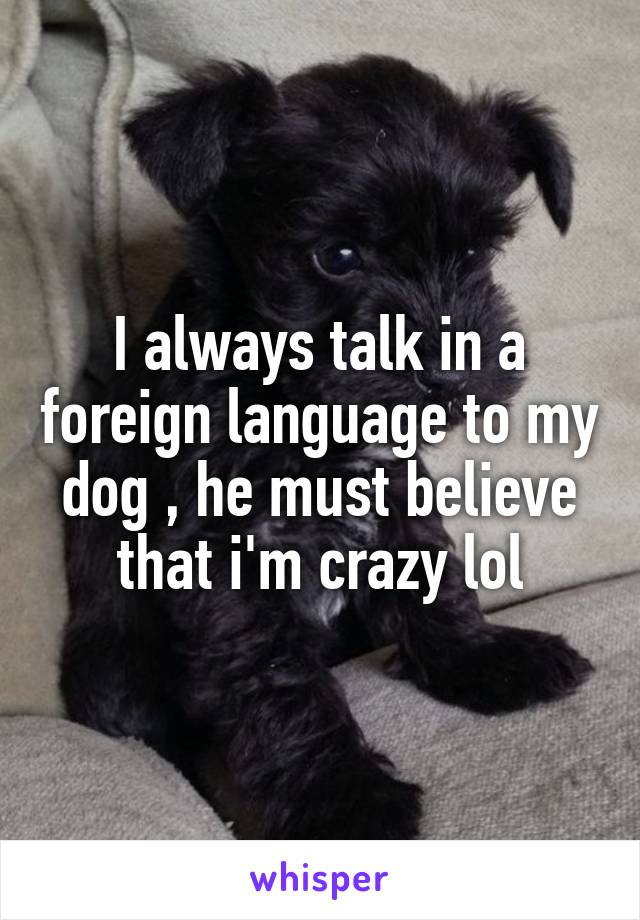 I always talk in a foreign language to my dog , he must believe that i'm crazy lol
