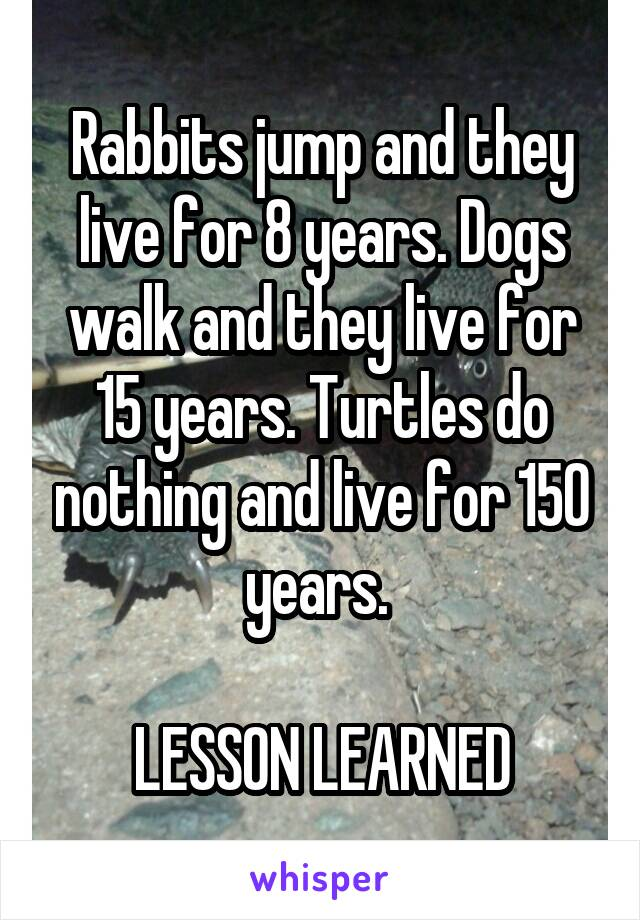 Rabbits jump and they live for 8 years. Dogs walk and they live for 15 years. Turtles do nothing and live for 150 years.   LESSON LEARNED
