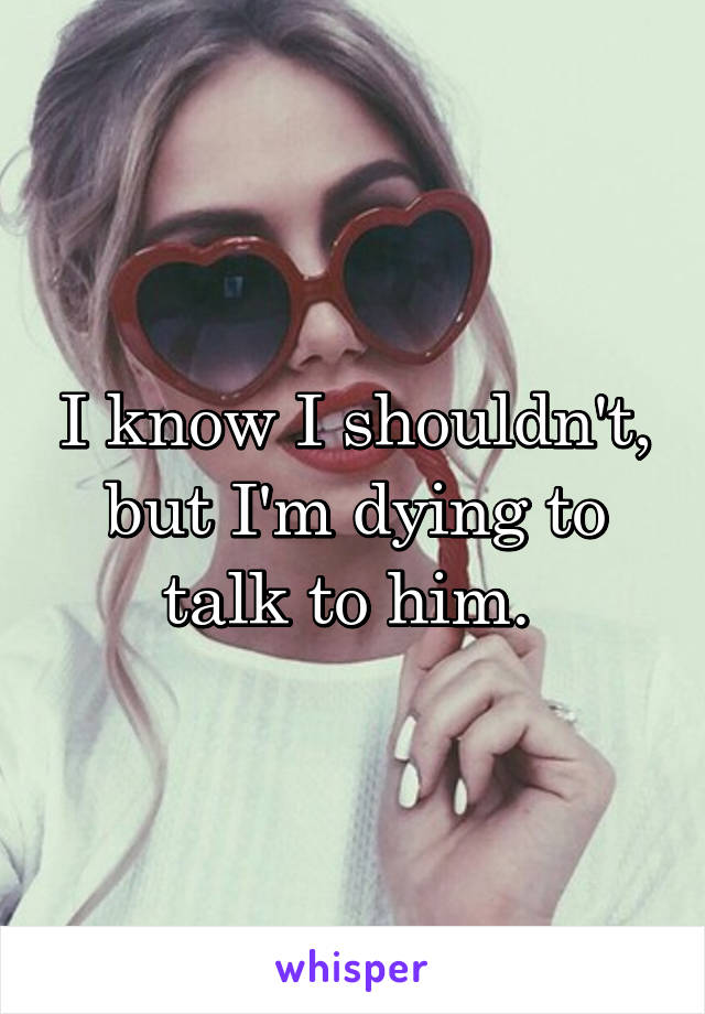 I know I shouldn't, but I'm dying to talk to him.