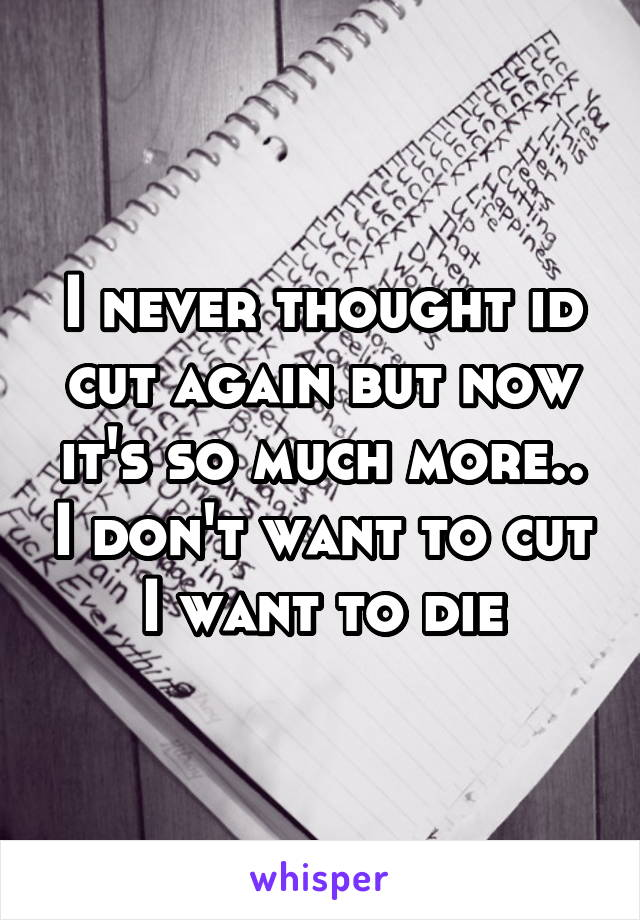 I never thought id cut again but now it's so much more.. I don't want to cut I want to die