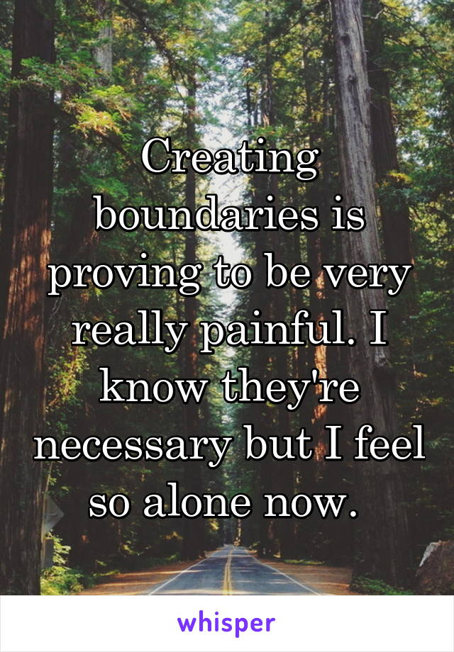 Creating boundaries is proving to be very really painful. I know they're necessary but I feel so alone now.
