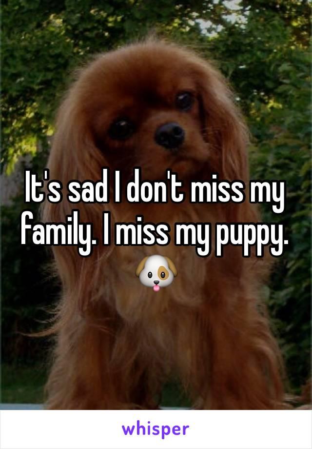 It's sad I don't miss my family. I miss my puppy. 🐶